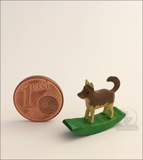 rockig animal dog