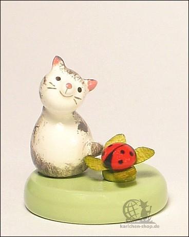 kitten and ladybeetle