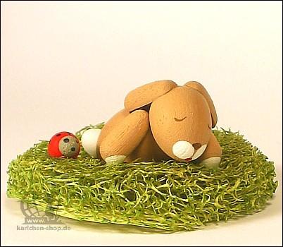 Häschen im Nest, schlafend